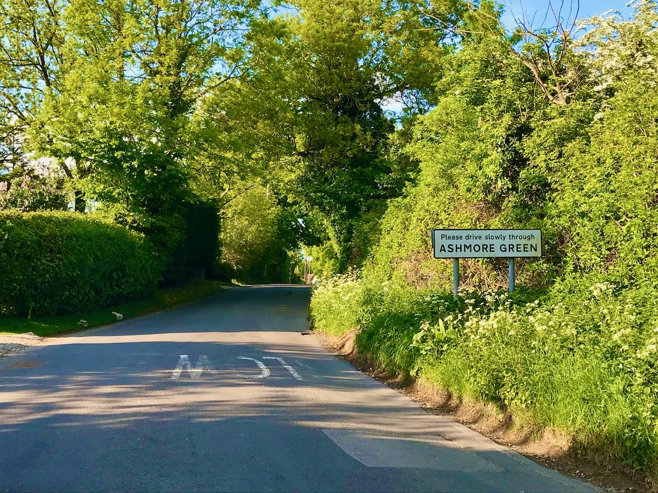 "A country lane in sunshine with a roadsigns on the right reading ""Ashmore Green""."