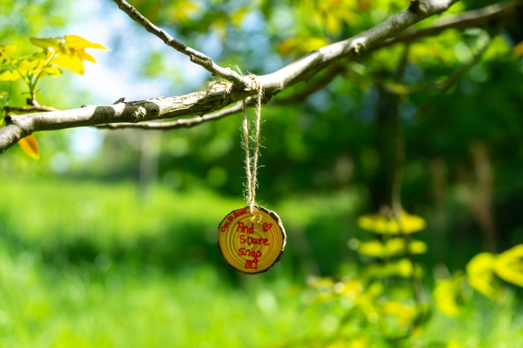 """A small wooden disc is hanging from a tree. Children's writing on the disc says """"Cold Ash, And Share a Snap"""". There is also a drawing of a camera on the disc."""